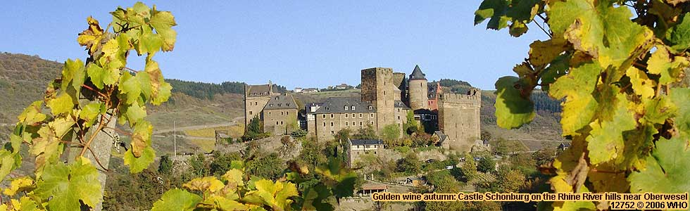 Golden wine autumn: Castle Schonburg on the Rhine River hills near Oberwesel.